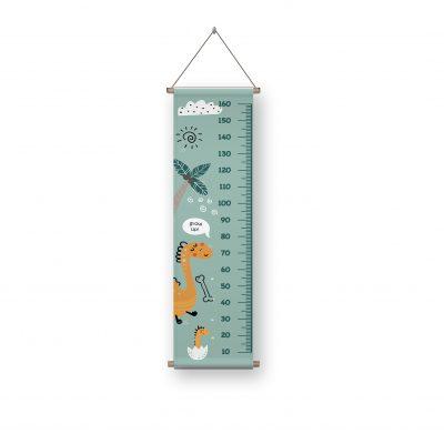 Β03-Π1 (αναστημομετρο)