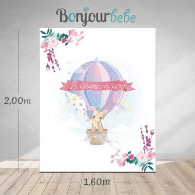 014_air balloon canvas